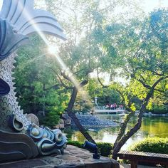 Find your Zen strolling through the Japanese Friendship Garden of Phoenix (and don't miss feeding the koi). #myphx