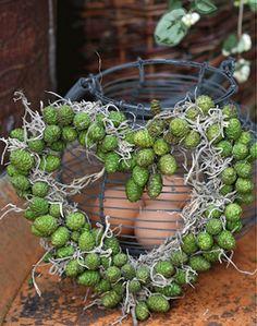 Fall Flowers, Dried Flowers, Paper Flowers, Herb Bouquet, Driftwood Wreath, Cat Plants, Paper Napkins For Decoupage, Nature Decor, Garden Crafts