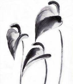 bamboo art japanese painting sumi | Original Sumie Brush Painting Callas Japanese art by AnimaAllegra