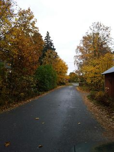 Autumn in Hitis Archipelago, Finland, Sidewalk, Country Roads, Autumn, Sea, Fall Season, Side Walkway, Walkway
