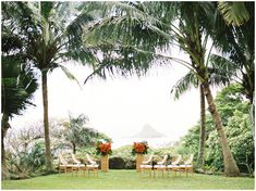 What a stunning day it was for a wedding! Witnessing Jessica and James' Tropical Elopement at Kualoa Ranch was an absolute honor. James And Alice, Jessica James, Kualoa Ranch, Bridal Tips, Wedding Venues, Wedding Ideas, Hawaii Wedding, Intimate Weddings, Happily Ever After