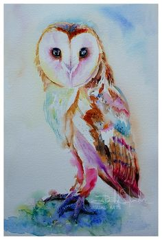 Owl Canvas Prints - Barn Owl Canvas Print by Isabel Salvador Owl Canvas, Canvas Art, Canvas Prints, Art Prints, Watercolor Owl Tattoos, Owl Watercolor, Watercolor Sketchbook, Bird Store, Owl Silhouette
