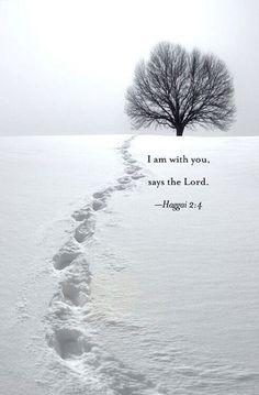 Haggai 2:4 December 15, 2014