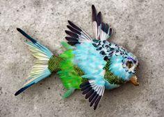 julien salaud: feathered piranah