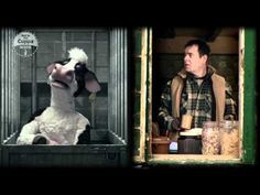 Kevin Eldon and puppet cow: a love story by Adam Miller creator of Mongrels