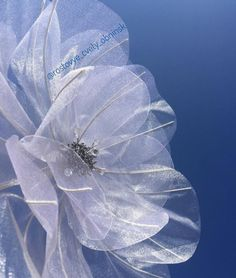 Flower Video, Video Tutorials, Ponies, Fabric Flowers, Plant Leaves, Photo Wall, Plants, Baby, Motorbikes