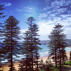 Another view of this beautiful place. Manly beach, North Steyne rd Never got bored of this view! Manly Beach Australia, Sydney Australia, Beautiful World, Beautiful Places, Beautiful Pictures, Great Places, Places Ive Been, Throughout The World, Great Memories