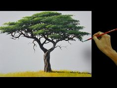 Painting tutorial on how to paint realistic acacia tree using acrylic in a step by step easy and basic painting tutorial. Acrylic Painting Trees, Tree Watercolor Painting, Basic Painting, Acrylic Painting Lessons, Simple Acrylic Paintings, Painting Videos, Acrylic Art, Painting Techniques, Knife Painting