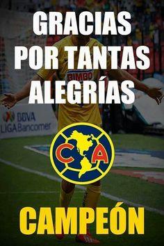 AMERICA Campeon Clausura 2014 !!!!! Decretado Campeones. Mini Copper, Association Football, Real Madrid, World Cup, Soccer, Chicago Bulls, Fifa, Grande, Angel