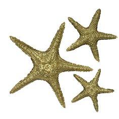 Fetco Home Decor Cruz Starfish Wall Décor | Products | Pinterest ...