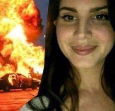 Stupid Memes, Funny Memes, Lana Del Rey Memes, Sapo Meme, Elizabeth Woolridge Grant, Elizabeth Grant, Lana Del Ray, A4 Poster, Posters