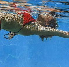 Eric Zener, Underwater Painting, Underwater Photos, Underwater Photography, Underwater Swimming, Hyper Realistic Paintings, Great Paintings, A Level Art, Photorealism
