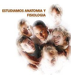 Se estudia Anatomía y Fisiología para Naturópatas | Escuela Internacional Naturopatia M.R.A.