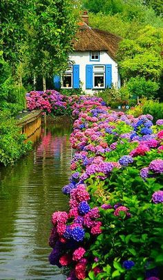 39 Cozy Country Garden to Make More Beauty for Your Own - Garden Care, Garden Design and Gardening Supplies Beautiful World, Beautiful Places, Beautiful Pictures, Garden Care, Diy Garden, Spring Garden, Garden Plants, Beautiful Flowers Garden, Most Beautiful Gardens