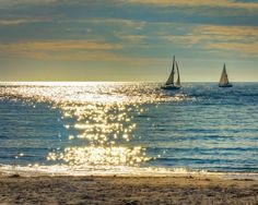 wall art home decor Fine Art Print sailing sailboat image 0 The Beach, Ocean Beach, Palm Beach, Photo Nom, Chasing Dreams, Belle Photo, Coastal, Beautiful Pictures, Pretty Photos