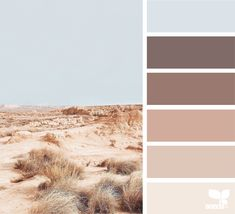 wanderlust design Seeds Summer Classics Anniversary Originally posted in January 2019 Beige Color Palette, Color Palate, Design Seeds, Earth Tone Colors, Earth Tones, Paint Schemes, Colour Schemes, Color Combinations, Maron