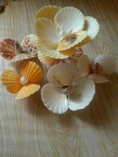 #seashell #shell #crafts #Ракушки #Хендмейд #handmade #чудоракушки #море
