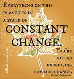 Constant Change - Karen Salmansohn