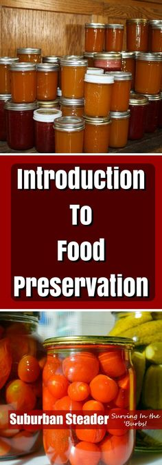 10 requirements for long term food storage long term food storage food storage and storage