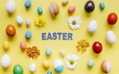 Indir duvar kağıdı Paskalya, sarı arka plan, Paskalya dekorasyon, çiçekler, Paskalya yumurtaları, beyaz gerbera