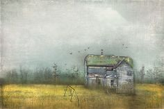 So Long Gone by Cheryl Tarrant, via Flickr