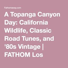 A Topanga Canyon Day: California Wildlife, Classic Road Tunes, and '80s Vintage | FATHOM Los Angeles Travel Guides and Travel Blog