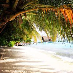 #kuramathi island #maldives #indianocean