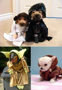 Yoda, Princess Leia, Darth Vader and Obi-Wan Kenobi #starwars