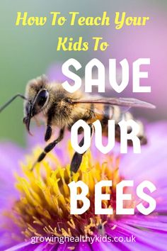 Teaching your children to love nature and save the bees is a worthwile task - Bees saving tipsideas and activities to get you thinking of how to help our bees, what flowers, pla -