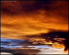 Volaris Sky 15