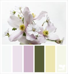 flora tones color palette from Design Seeds Scheme Color, Colour Pallette, Colour Schemes, Color Patterns, Color Combinations, Design Seeds, Color Style, Color Balance, Color Studies