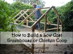 How to Build a Greenhouse or Chicken Coop Wood Pallets Chickens - Homesteading - Livestock - The Homestead Survival - Hens - Rooster - Chicken Coop - Farm Pallet Greenhouse, Diy Greenhouse Plans, Miniature Greenhouse, Greenhouse Wedding, Homemade Greenhouse, Outdoor Greenhouse, Greenhouse Gardening, Outdoor Projects, Pallet Projects