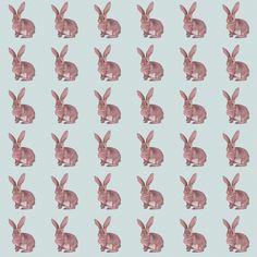 BunnyPaper