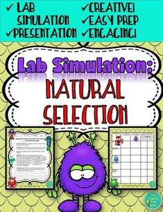 This product is a lab simulation on natural selection where students will become fictional characters with a specific set of traits (32 different trait cards). They will be lead through a whole class simulation presentation where they will read and decide whether