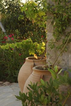 Rustic pots for the garden