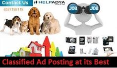 Looking for some assistance to create a social media buzz for a new product launch? Contact Help Adya, the best search engine platform with combination of classified feature , who advertise the product & services across all major social media platforms! TheirFree Ad Postingtactics ensure that your product receives great publicity and makes a noise amongst the target audiences! So what are you waiting for? This is the best platform you can ever get to make a great and amazing launch of your pro New Product, Product Launch, Contact Help, Post Free Ads, Search Engine, Platforms, Searching, Promotion, Waiting