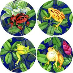 Gorgeous Green and Tropical Frogs Stone Coasters #frog #giftidea #coasters