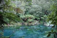 Tarawera river, New Zealand