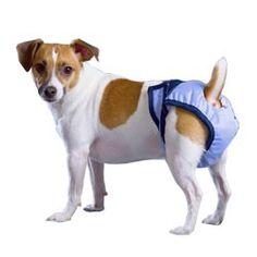 "Minidogworld - culotte hygienique/ couche pour chien incontinent ""PoochPad"""