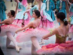 Admirar el precioso vestuario que Gabriela Tylesova ha creado para lel ballet La Bella Durmiente de McAllister para el Australian Ballet