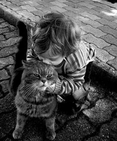 Heartwarming Photos of Kids Playing with Their Cats
