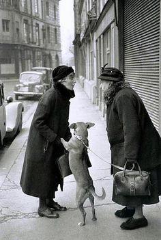 Place Dauphine - Paris 1952 - Henri Cartier-Bresson