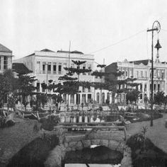 Avenida Eduardo Ribeiro. Manaus. Álbum do Amazonas 1901-1902.