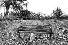 Supported Bench - Old Weathered Beach Bench - Black and White Photography http://www.etsy.com/shop/KallistaSalon White Photography