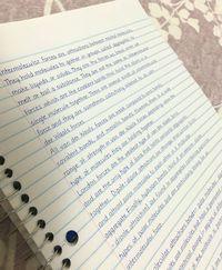 Se eu tivesse essa letra, pode ter certeza de que eu iria estudar meus cadernos dia e noite.