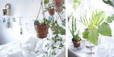 Porta un tocco di verde in camera appendendo piante in vaso attorno al letto - IKEA