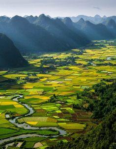 Rice Paddy fields, Hà Giang Province, Vietnam