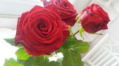 RunoMaalari: Onnellista Ystävänpäivää
