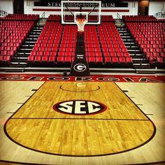 University of Georgia's Stegeman Coliseum.