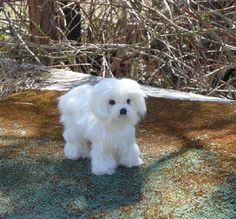 I would Love to make a handmade Felted Miniature of your Favorite Pet for you to Treasure as a Family Keepsake! It will snuggle in the palm of your hand and surprise..it can even POSE! I can even add a bit of your pets fur to make it extra special. This is an Example~Maltese~ Cali. I will use your photos for your miniature sculpture. Immortalize your pet in Miniature. These sculptures are not toys, but works of art made for the discerning collector. Great for displaying on a desk or…